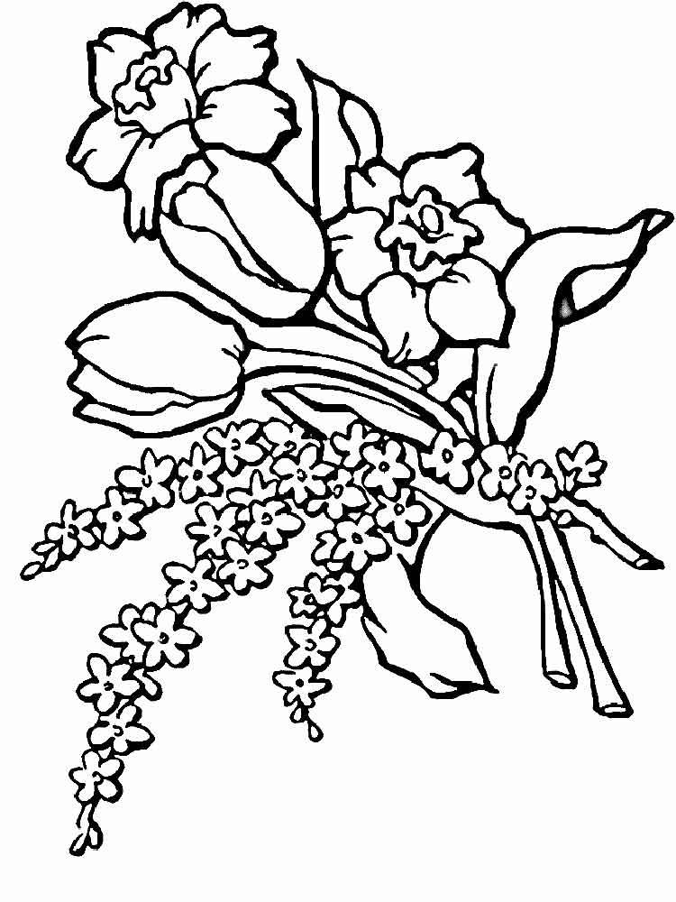 raskraski-buket-cvetov-15