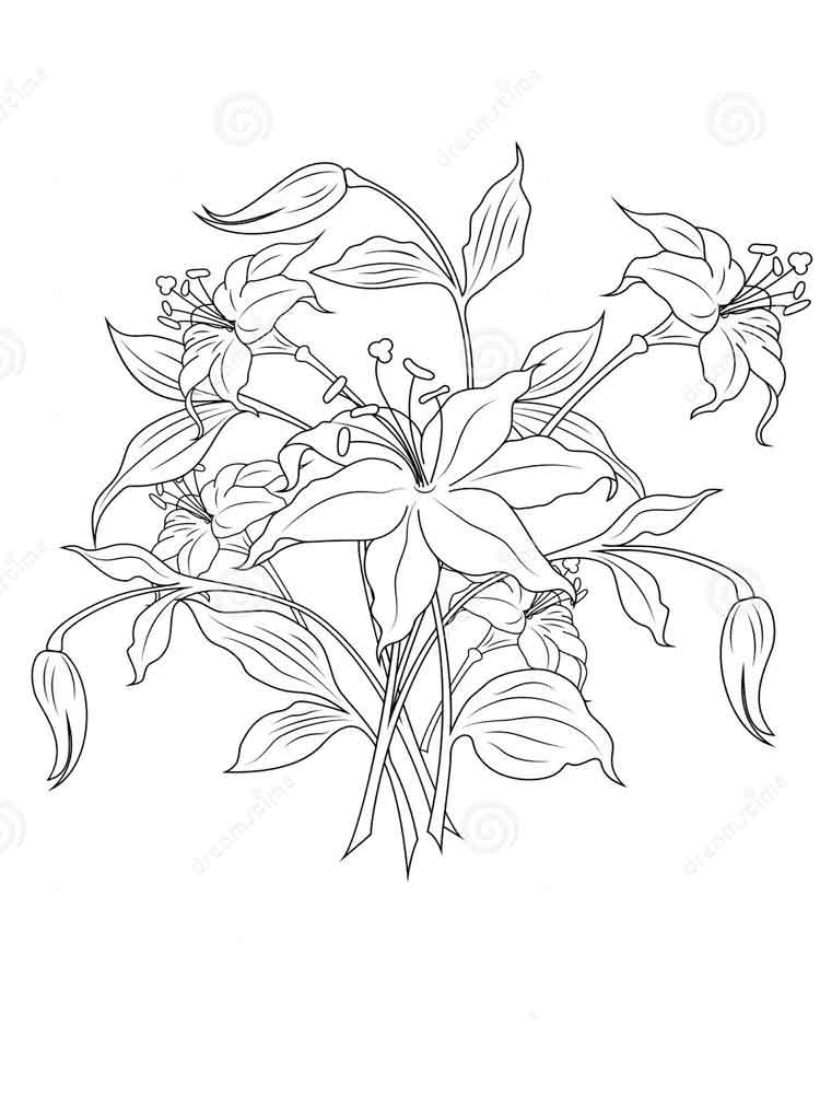 raskraski-buket-cvetov-8