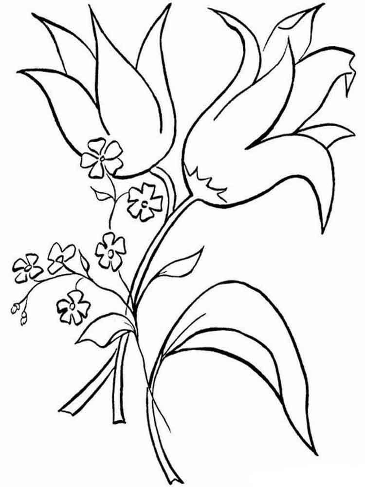 raskraski-cvetok-kolokolchik-10