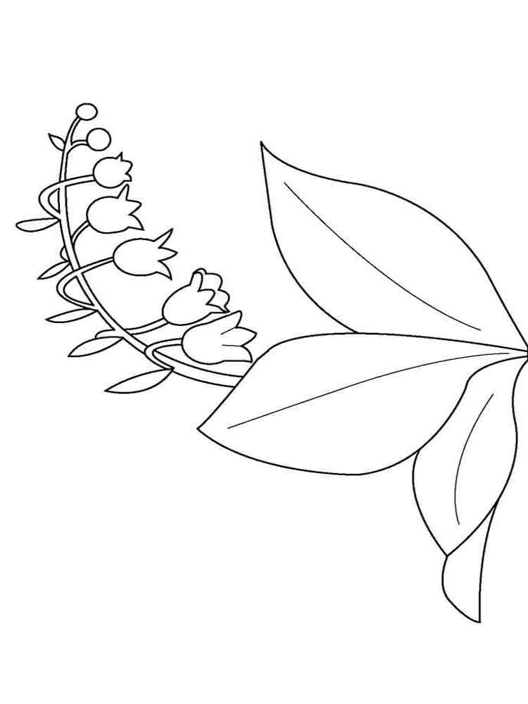 raskraski-cvetok-kolokolchik-13
