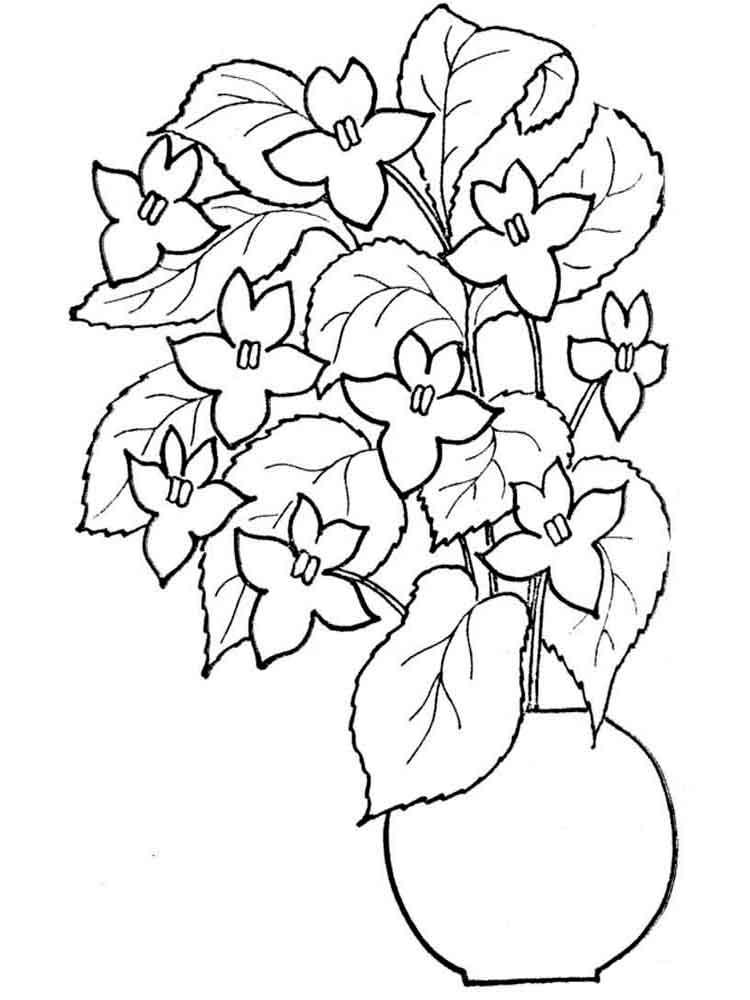 raskraski-cvety-v-vaze-18