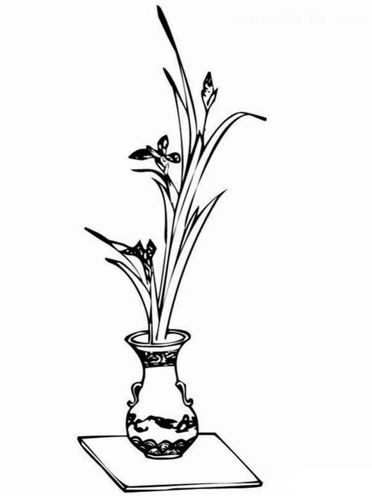 raskraski-cvety-v-vaze-9