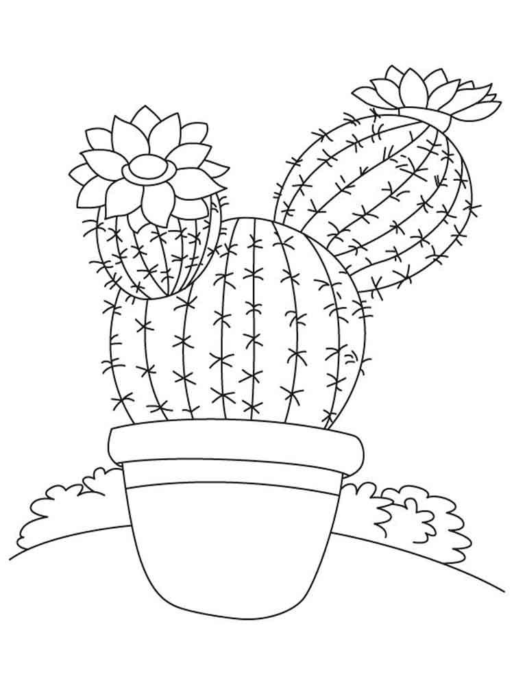 raskraski-kaktus-11