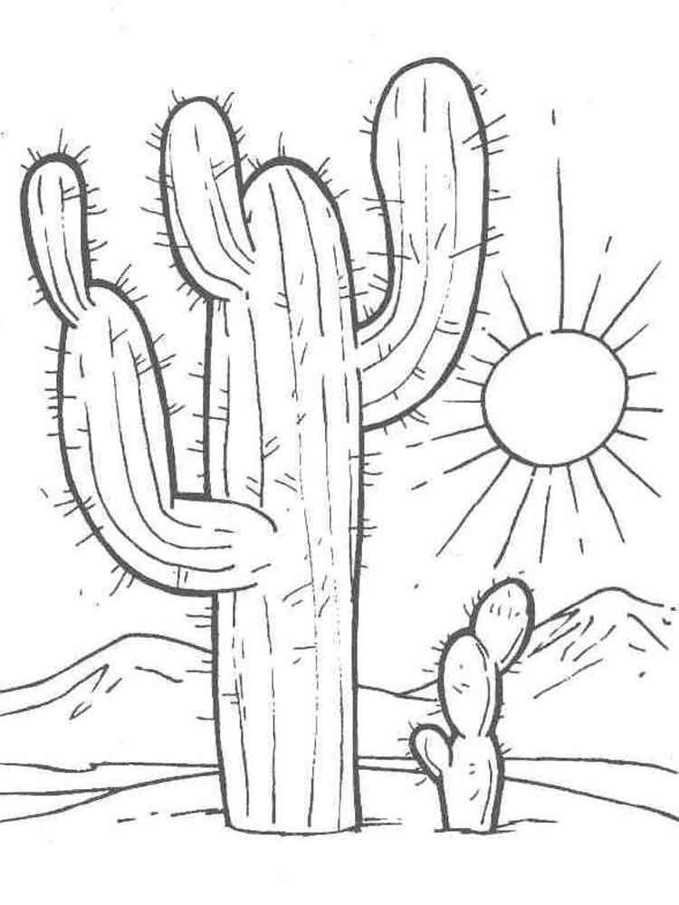 raskraski-kaktus-3