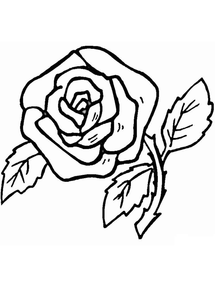 raskraski-rosy-11