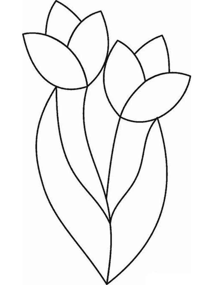 raskraski-tulpany-3