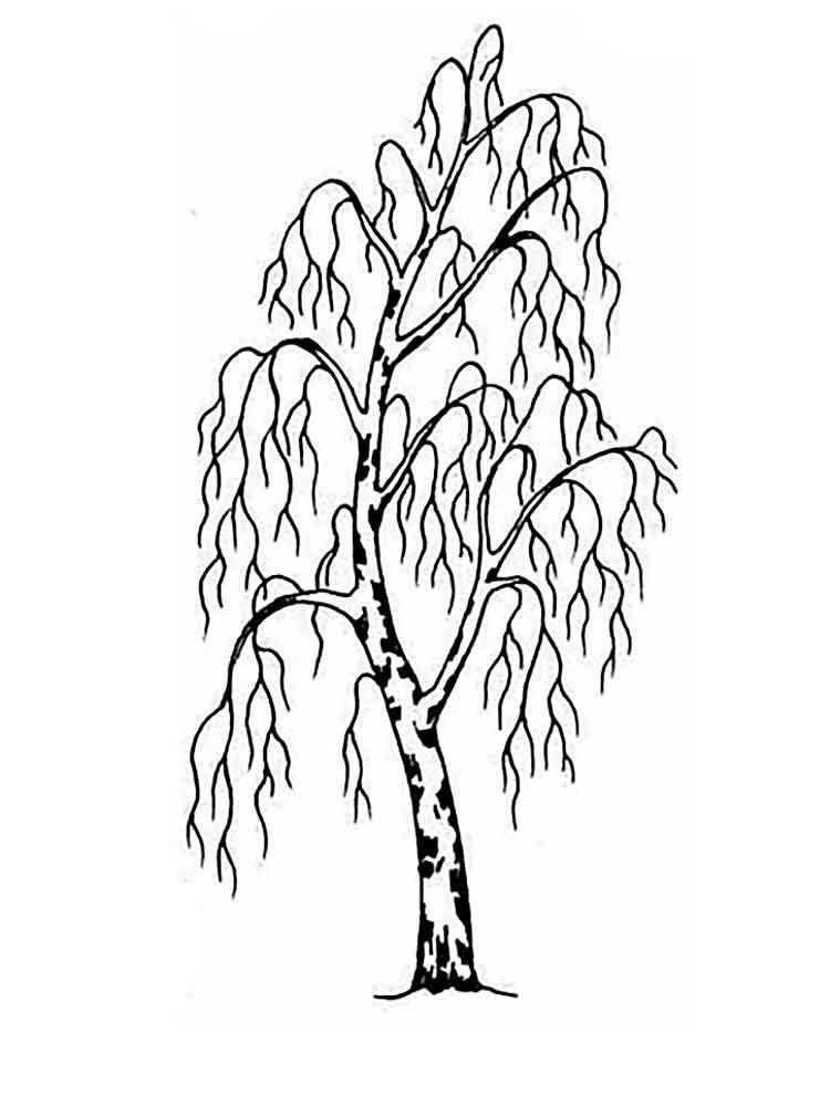 Раскраски Дерево без листьев. Скачать и распечатать ...