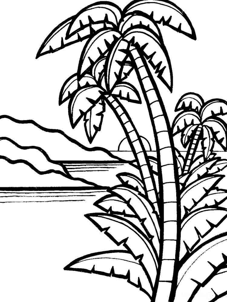 raskraski-palma-10