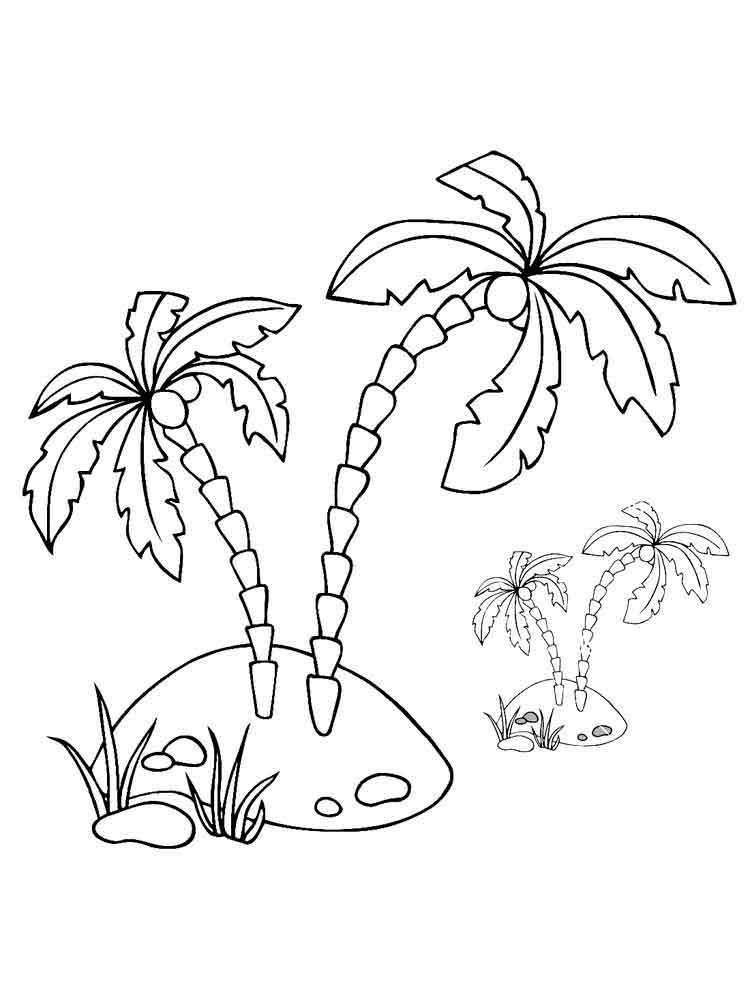 raskraski-palma-11