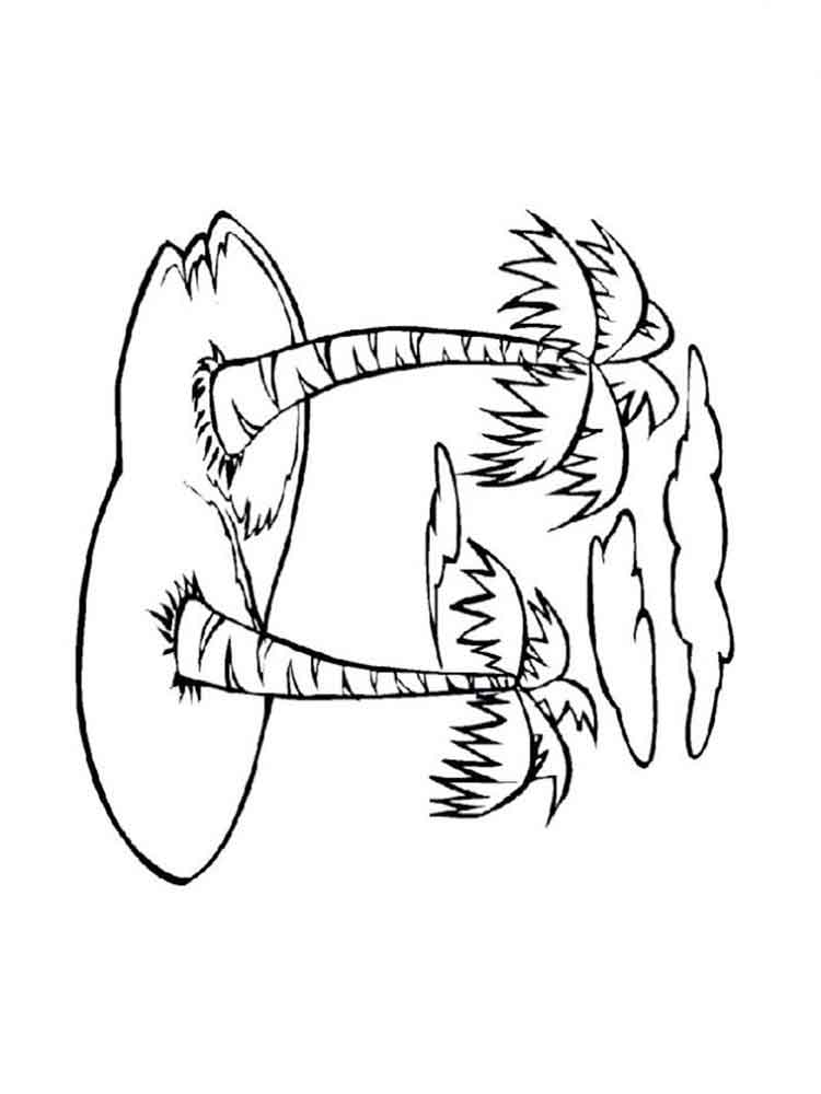 raskraski-palma-16