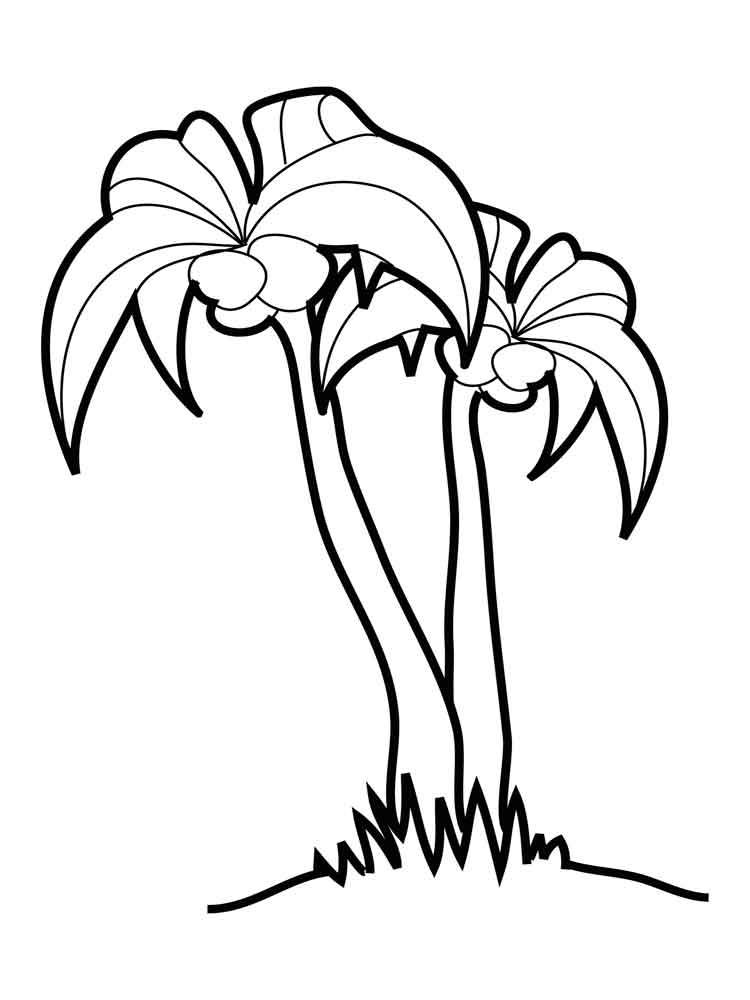 raskraski-palma-18