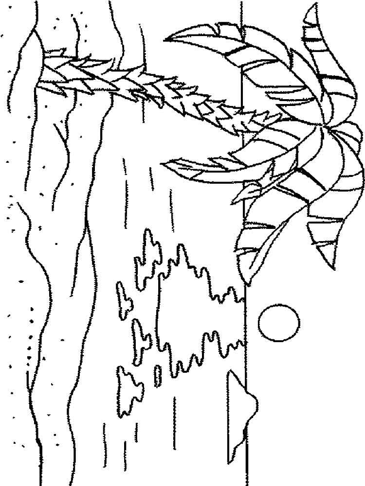 raskraski-palma-2