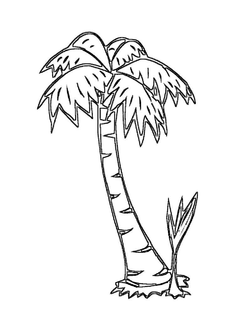 raskraski-palma-3