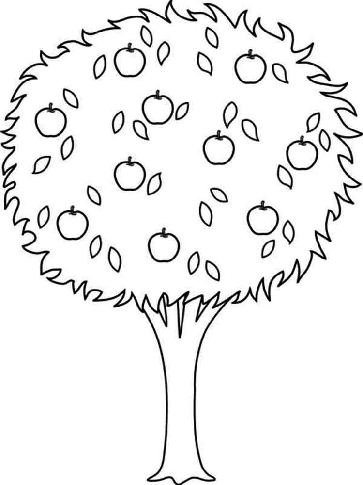 Картинка дерево для детей на белом фоне для раскрашивания