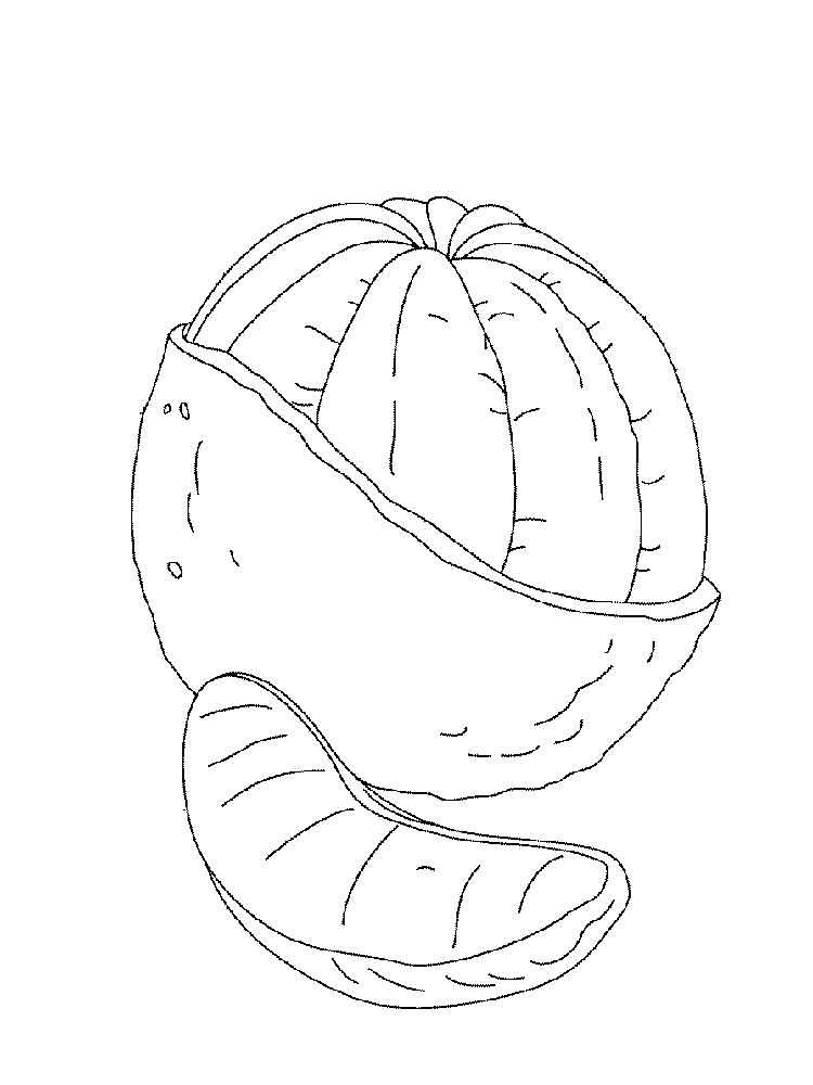 raskraska-apelsin-13