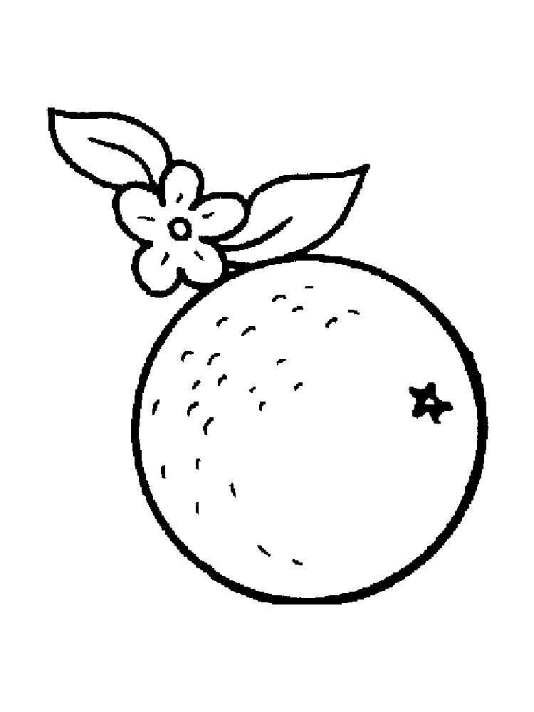 raskraska-apelsin-14
