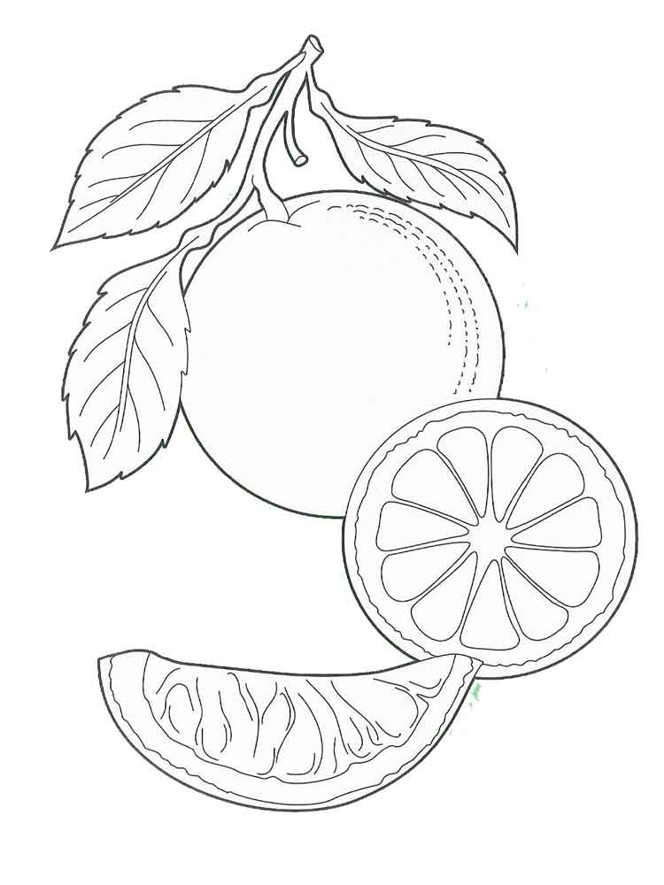 raskraska-apelsin-4