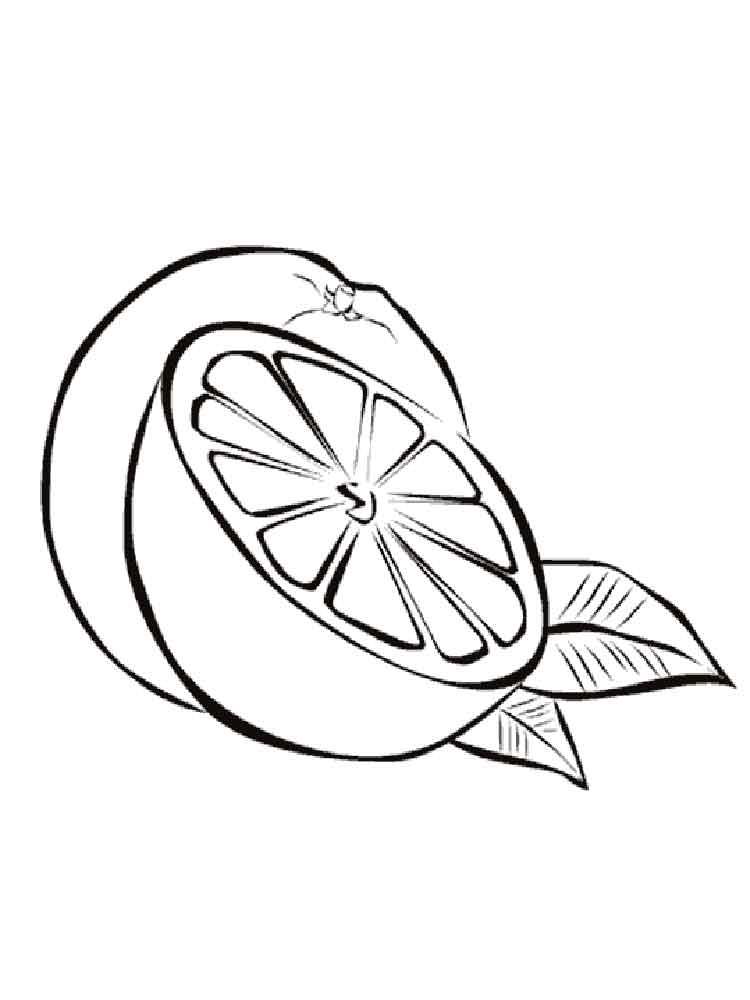 raskraska-apelsin-7