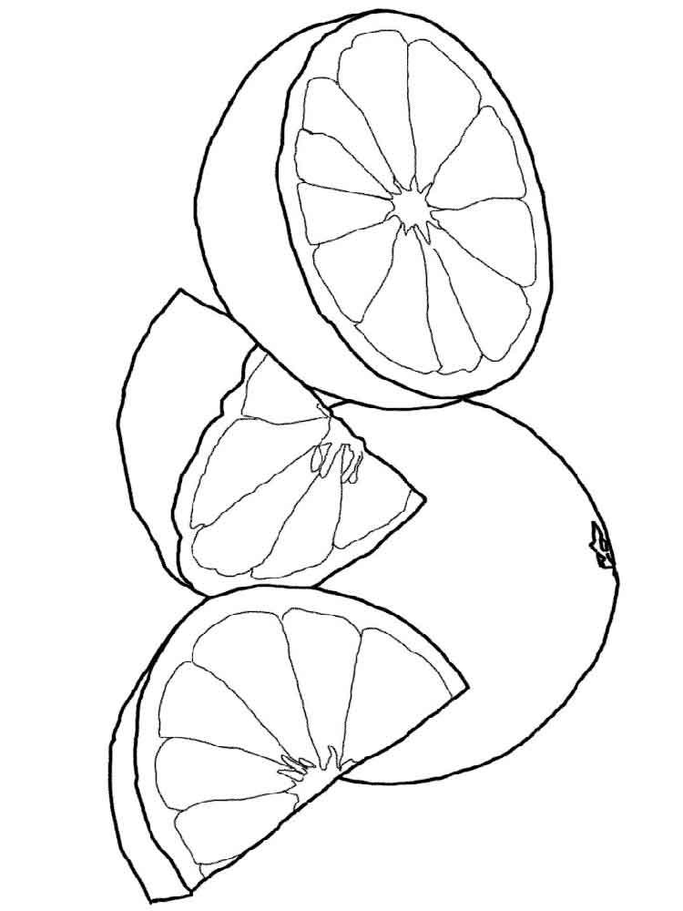 raskraska-grapefrut-1