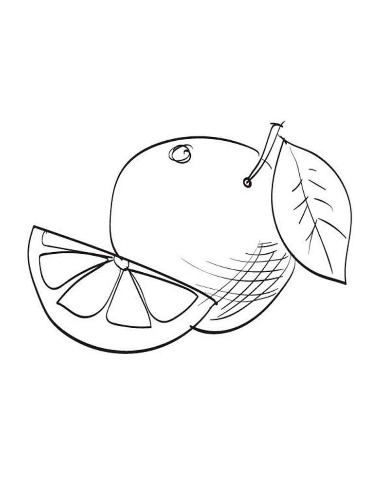 raskraska-grapefrut-5