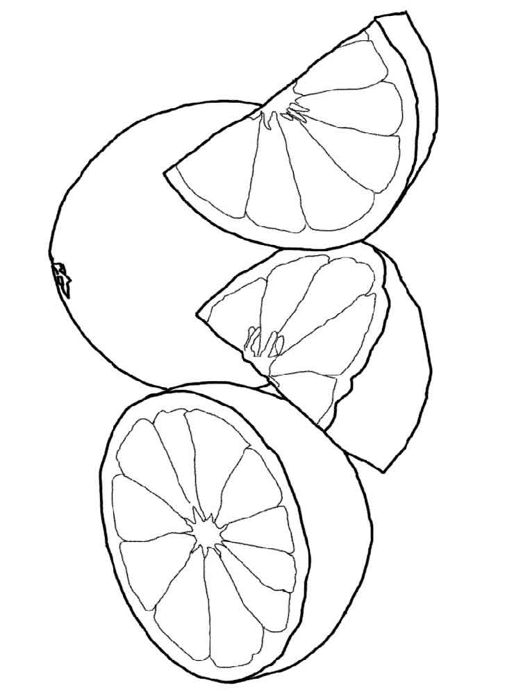 raskraska-grapefrut-7