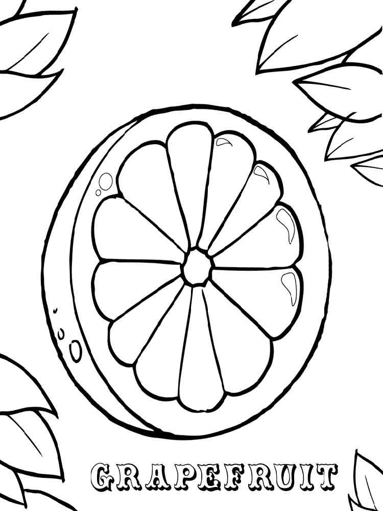 raskraska-grapefrut-9