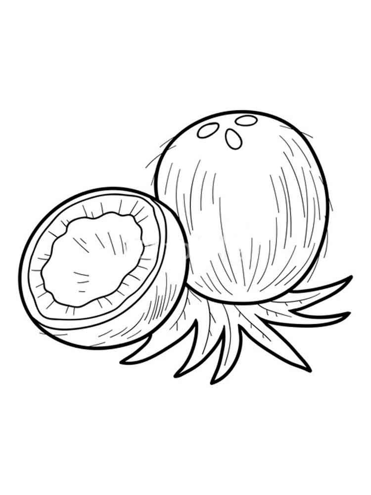 raskraska-kokos-1