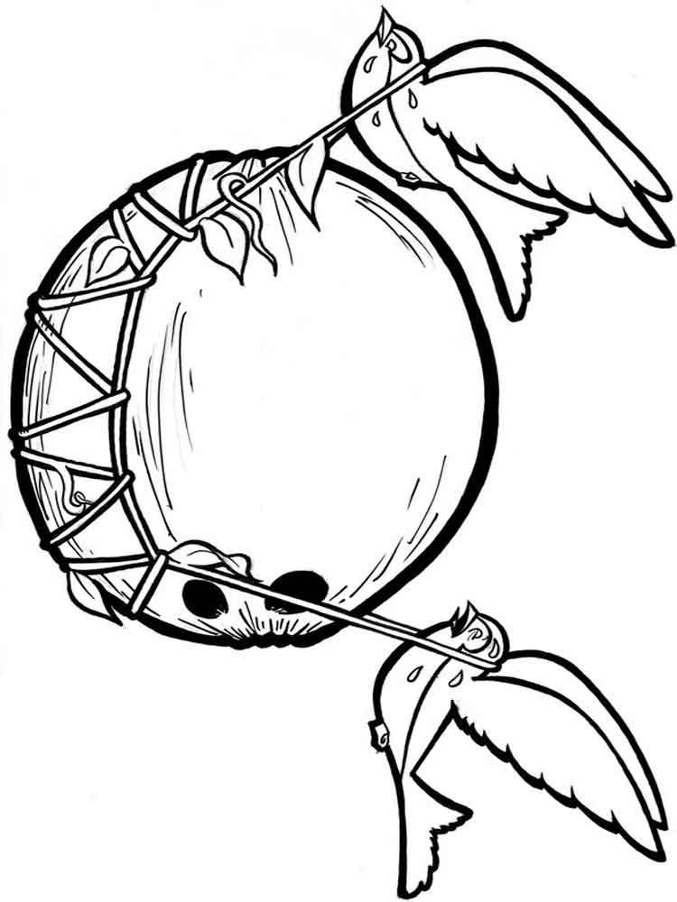 raskraska-kokos-12
