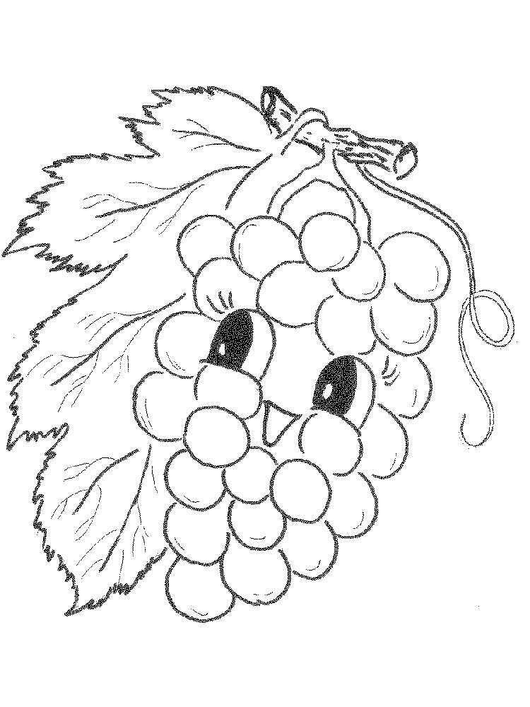 raskraska-vinograd-14