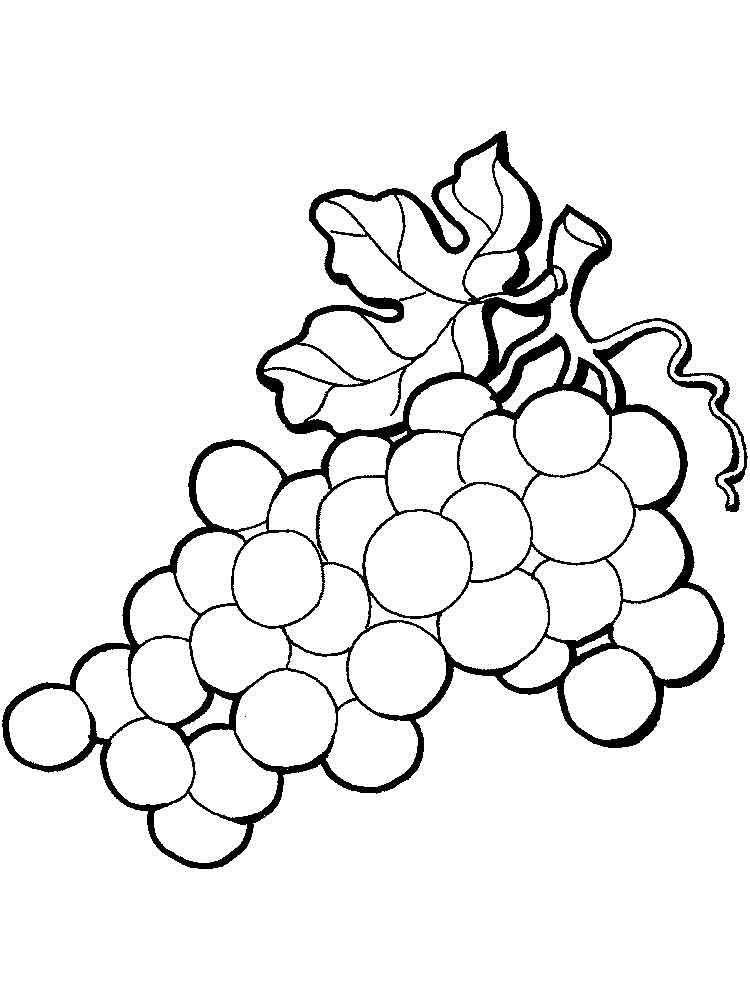 raskraska-vinograd-15
