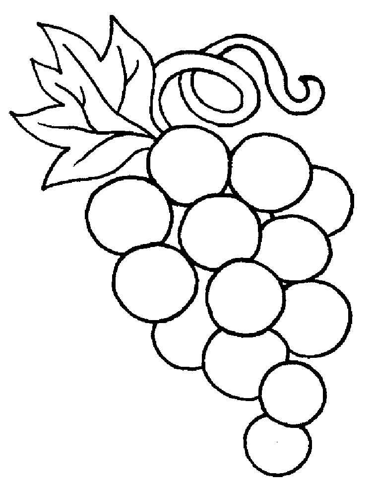 raskraska-vinograd-5