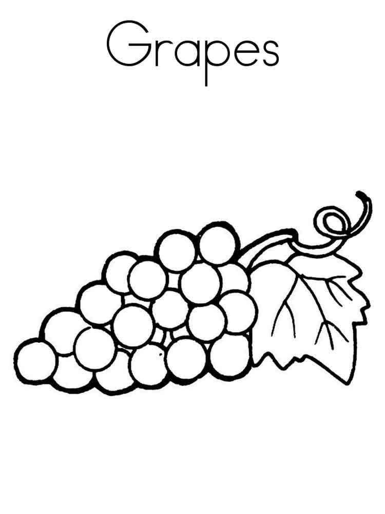 raskraska-vinograd-6