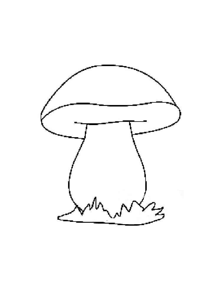 сколько рисунок боровика для раскрашивания елочки использует одноразовые