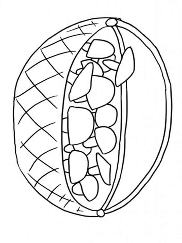 raskraski-korzinka-3