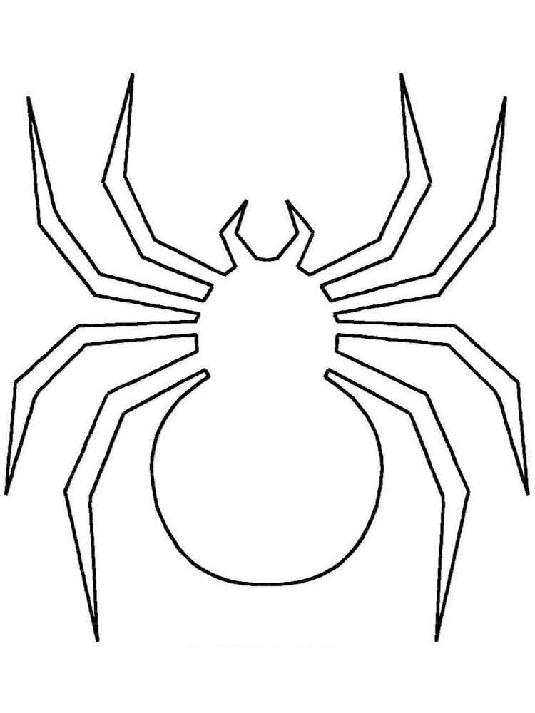 raskraski-pauk-10