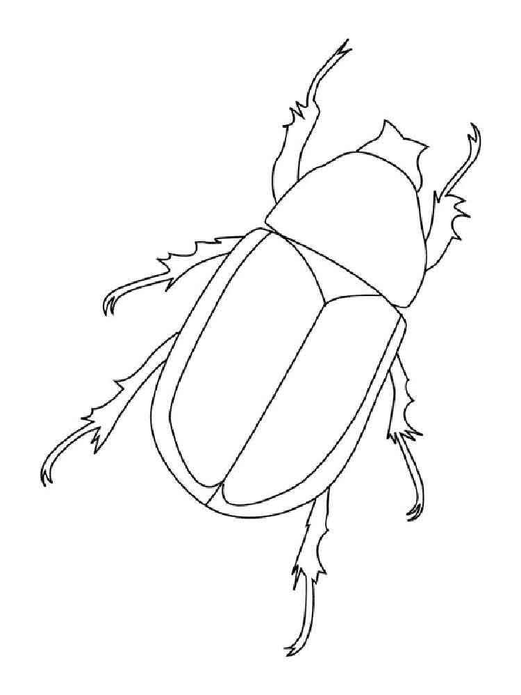 раскраска жук носорог распечатать пока