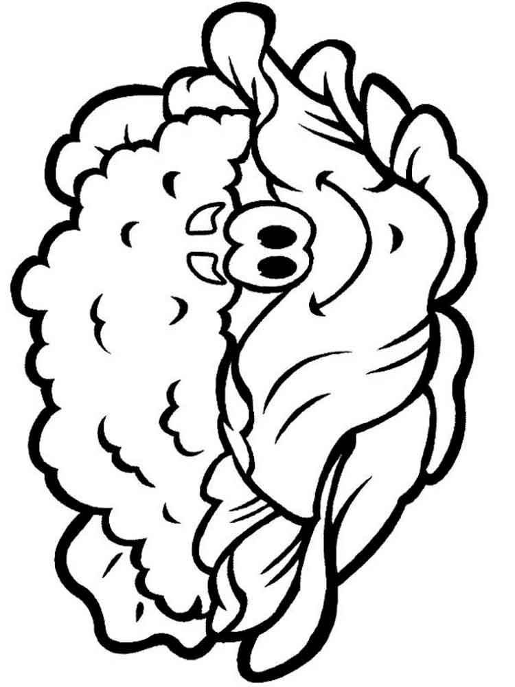 raskraska-cvetnaja-kapusta-1