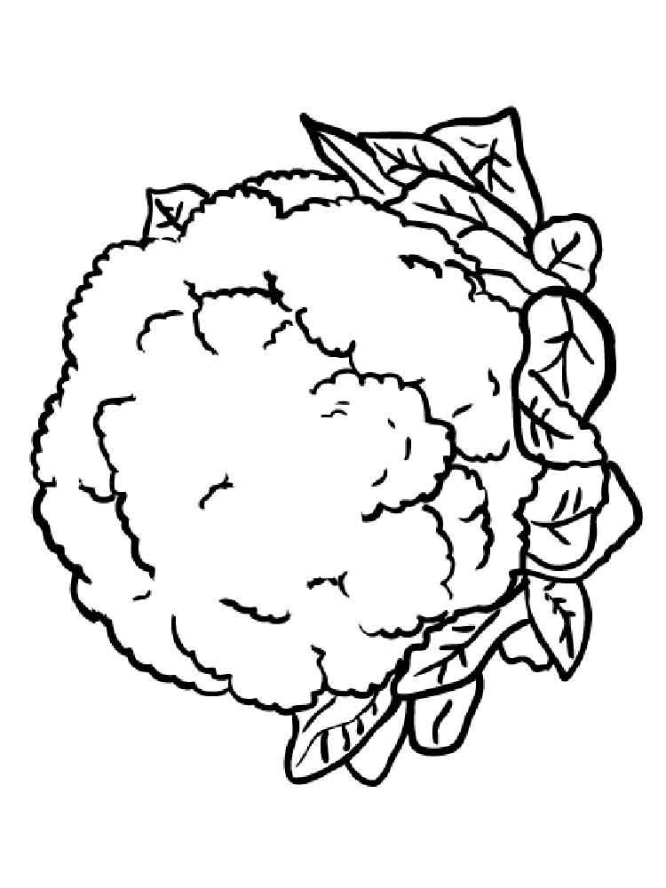 raskraska-cvetnaja-kapusta-2