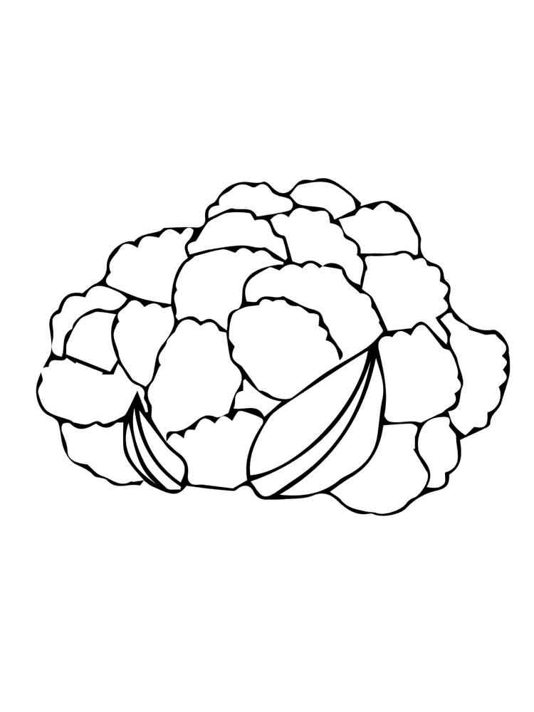 raskraska-cvetnaja-kapusta-6