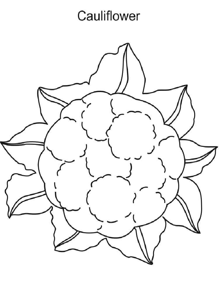 raskraska-cvetnaja-kapusta-7
