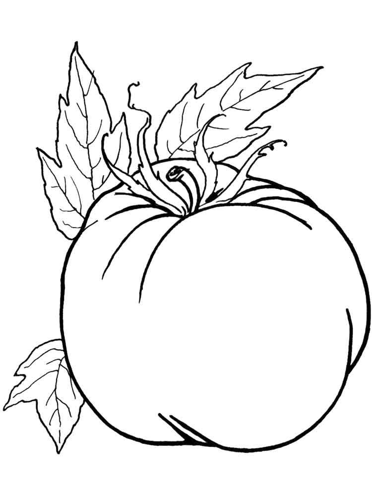 raskraska-pomidor-12