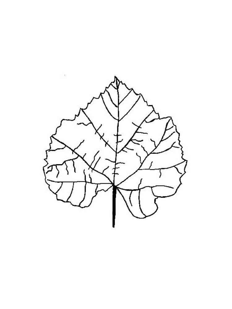raskraski-listya-27