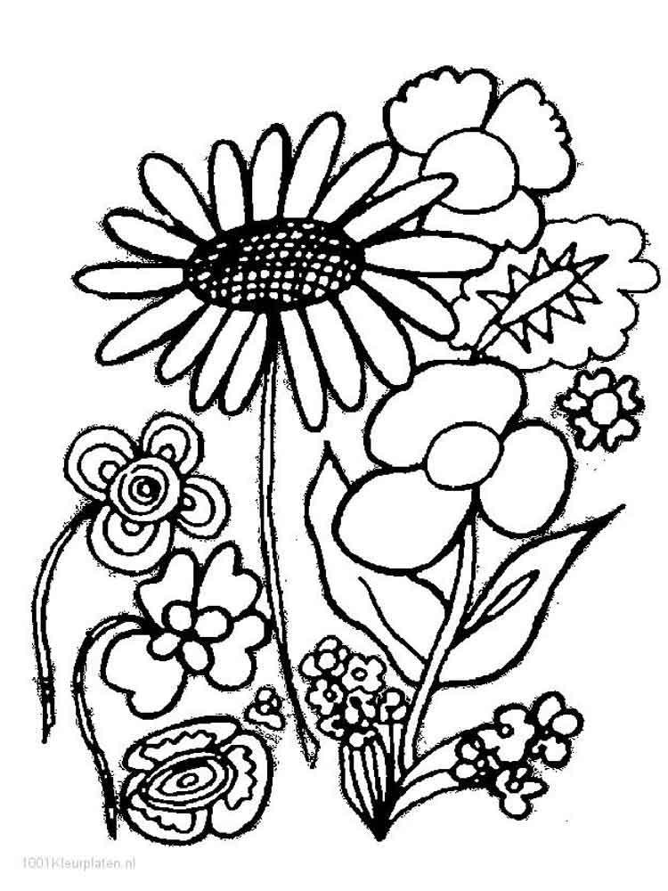 Прикольные картинки, картинки с цветами для детей 6-7 лет