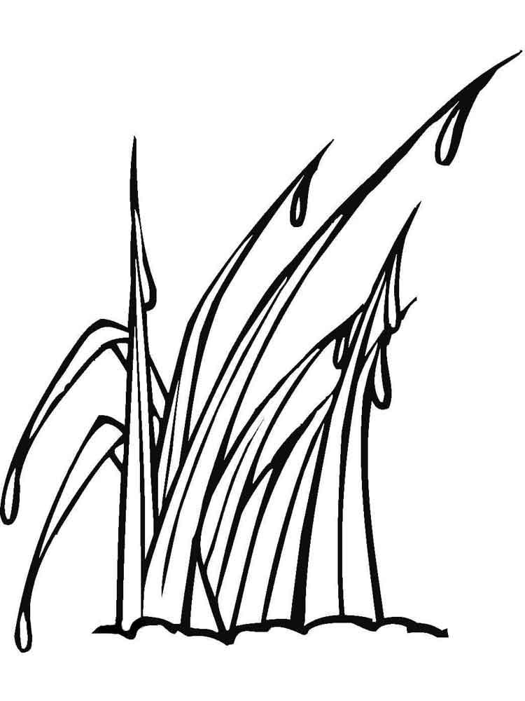 raskraski-trava-11