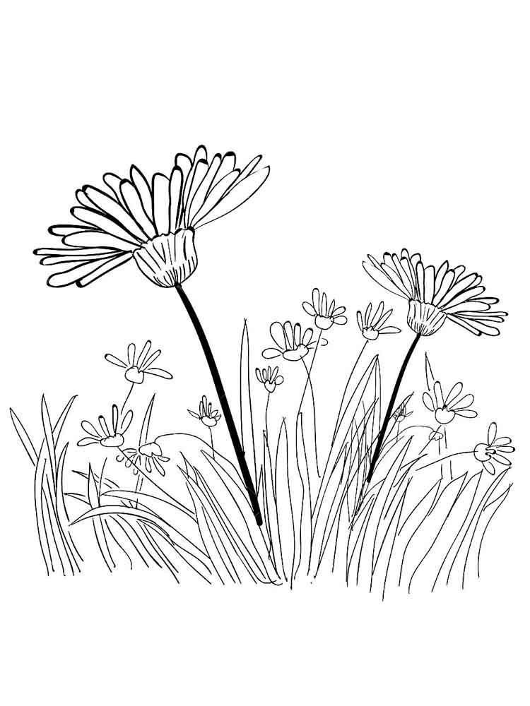 raskraski-trava-15