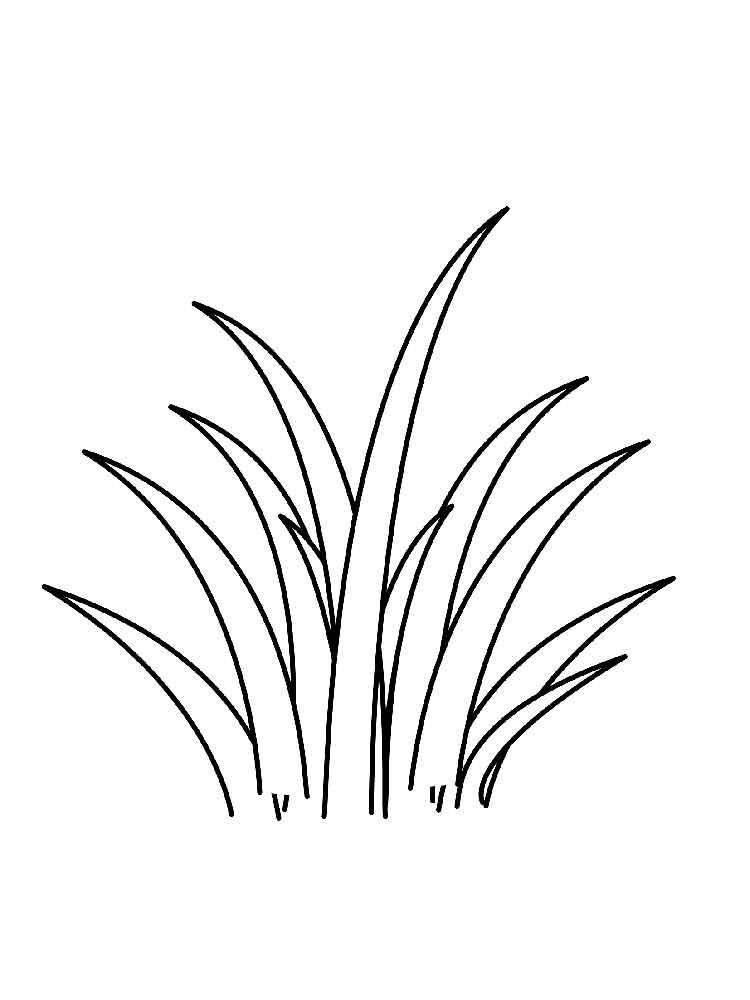 raskraski-trava-2