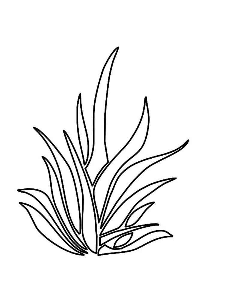 raskraski-trava-9