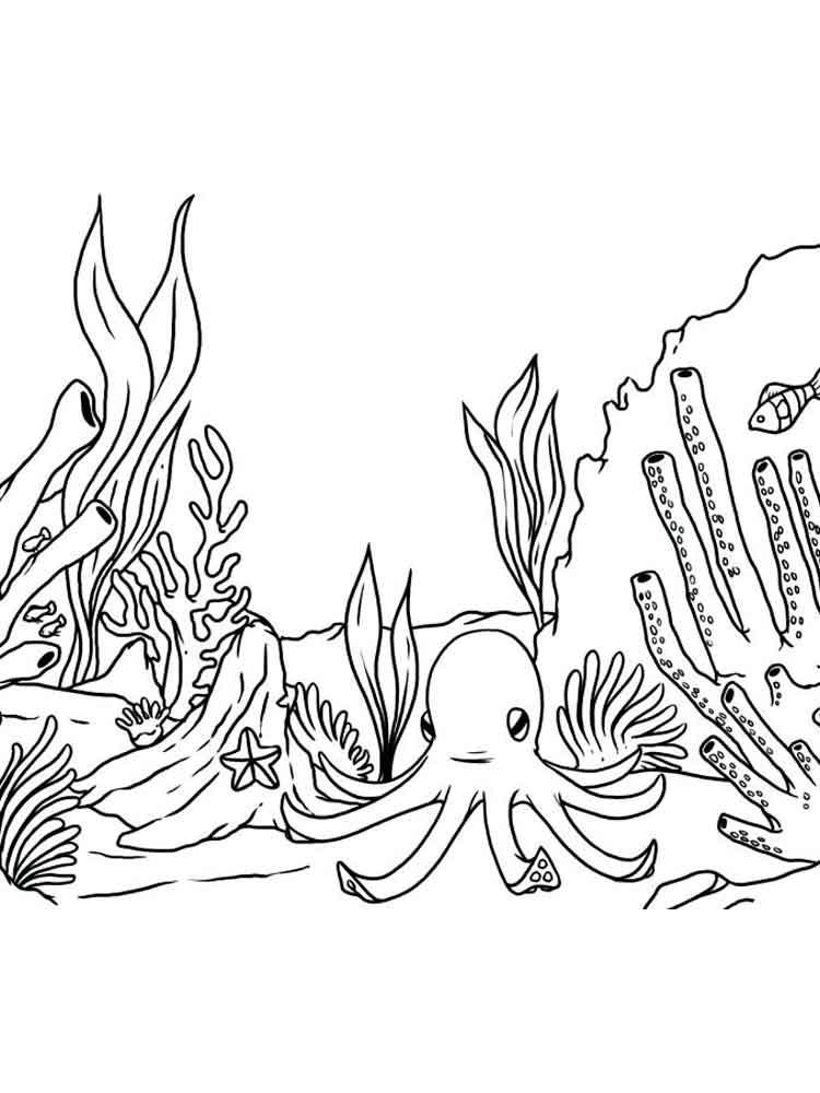 Рисунок с рыбкой с водорослями камнями и пузырьками раскраска