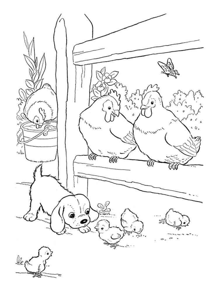 птичий двор раскраска для малышей добрая участливая