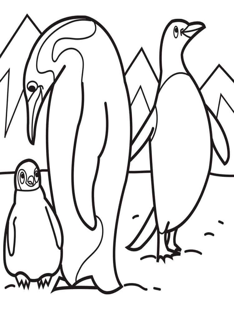 raskraski-pingvin-13
